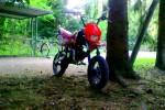 Masai DB 50