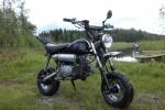 Skyteam Monkey 125