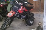 xsport 110cc